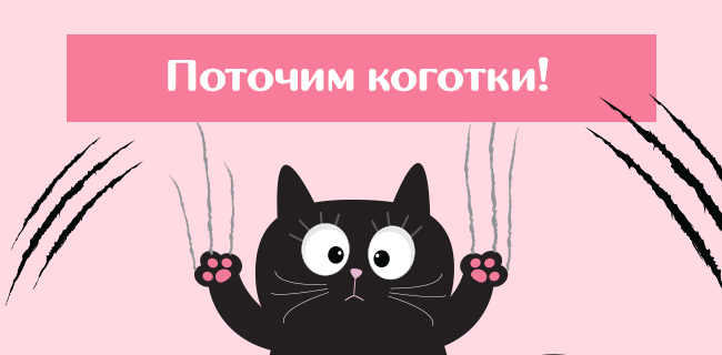 7 шагов, как приучить кошку к когтеточке